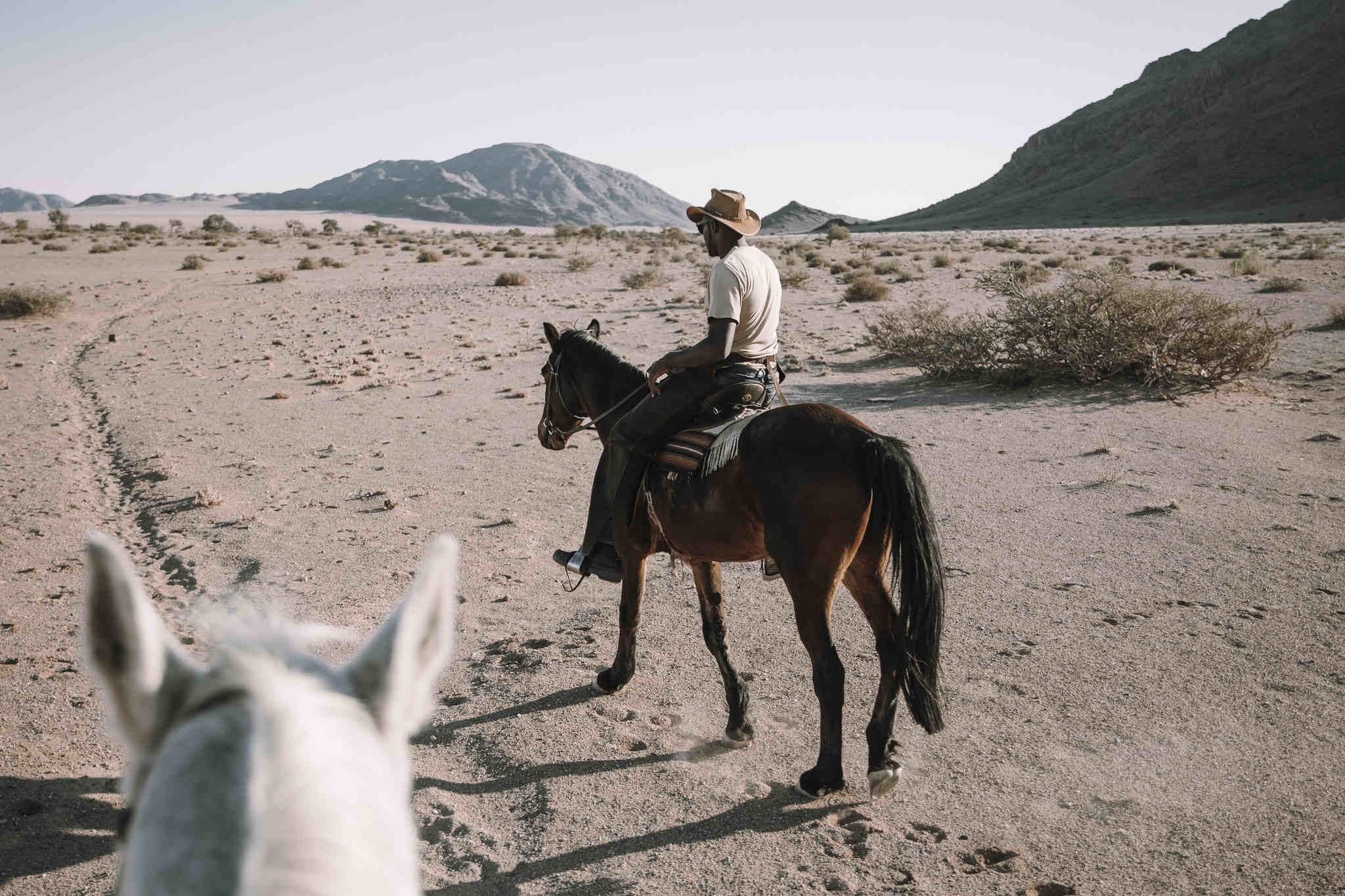 Geführte Pferdeausritte