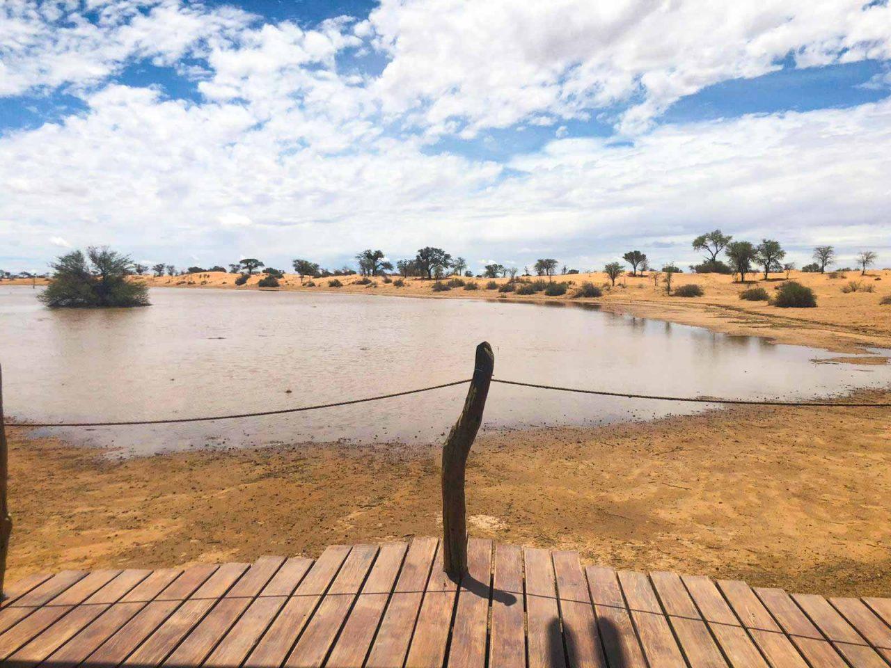 Regen in der Kalahari