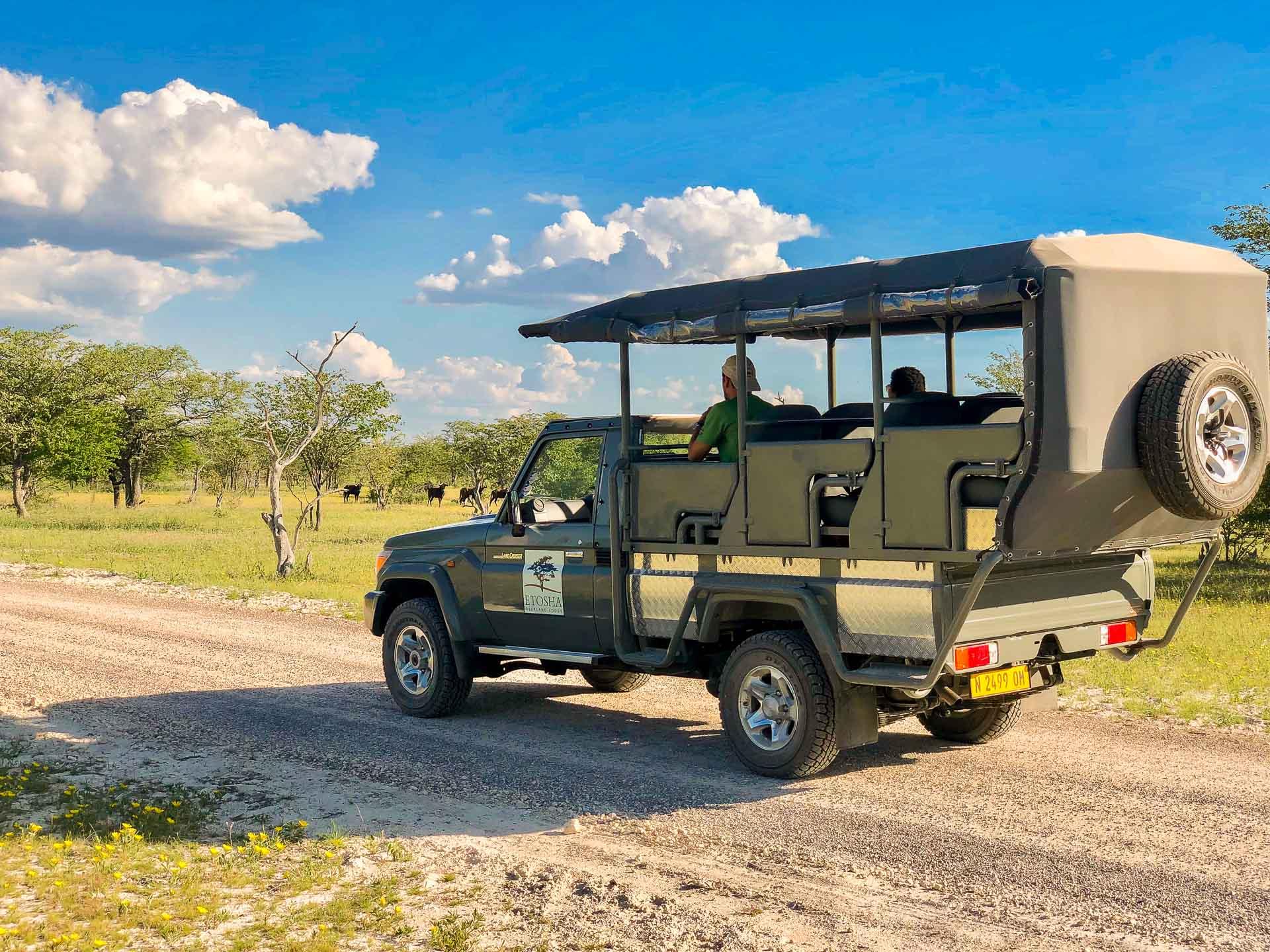 Sundown Drive Fahrzeug der Etosha Oberland Lodge in Namibia